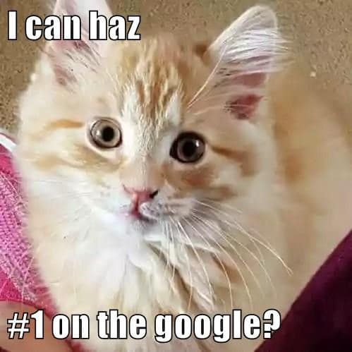 I can haz #1 on the google?